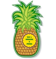 organic pineapple vector image vector image