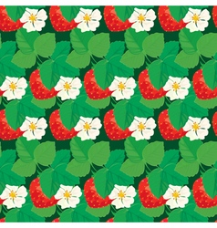strawberry seamless 6 380 vector image vector image