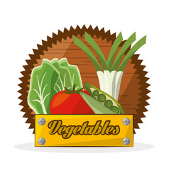 Vegetables food ingredient banner vector