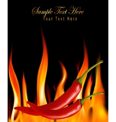 Hot chili peppers in fire vector