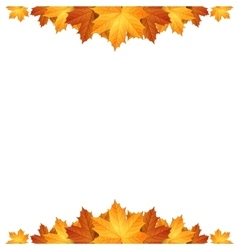 Border of autumn maples leaves vector
