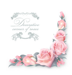 Corner background with pink roses and green vector
