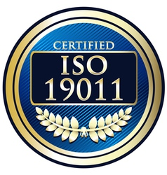 ISO 19011 vector image