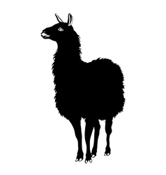 Llama silhouette black and white vector