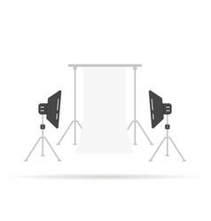 photographic scene with softboxes vector image