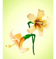 elegant flower vector image