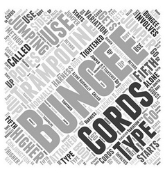Types of Bungee Jumping Word Cloud Concept vector image