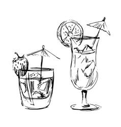 Hand sketch of summer drinks vector