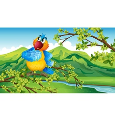 A parrot near the riverbank vector image