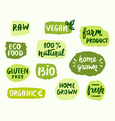 bio natural food concept vector image