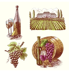 Wine sketch decorative set vector