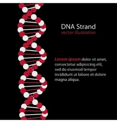 Dna strand genetic code vector