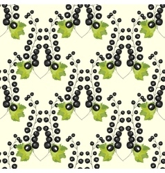 Black currant berry seamless pattern background vector