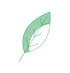 Silhouette natural leaf symbol to conservation the vector