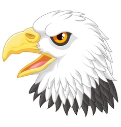 Eagle head mascot cartoon vector
