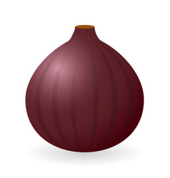 fig isolated vector image