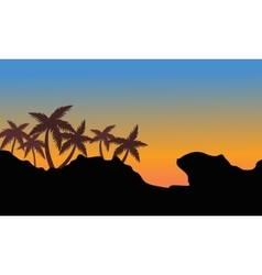 Silhouette of palm on the hills vector