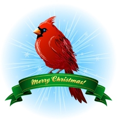 Christmas Frame with northern cardinal vector image vector image