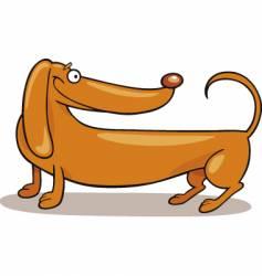 dachshund vector image