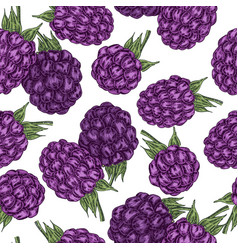 hand drawn sketchy berries ripe blackberry branch vector image vector image