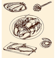 Vintage hand drown seafood vector