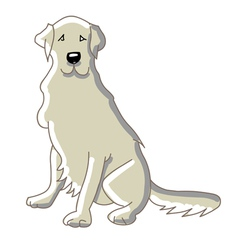 labrador dog vector image