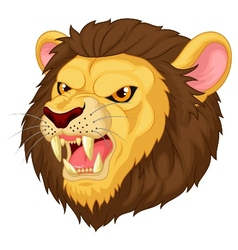 Angry lion head mascot cartoon vector image vector image