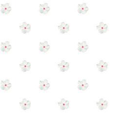 Colorful beautiful naturalistic white flower vector