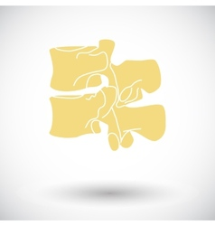 Anatomy spine icon vector image