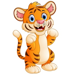 baby tiger cartoon vector image vector image