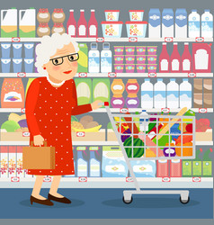 grandmother shopping vector image vector image