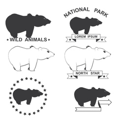 set of icons with the image of a bear vector image vector image