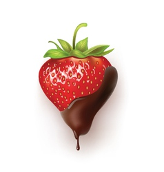 Strawberry chocolate vector