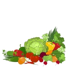 Fresh raw vegetables isolated on white vector