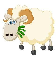 Cartoon sheep eating grass vector image