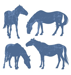 Grunge silhouettes of horses vector image