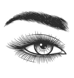 Beautiful lady eye sketch vector