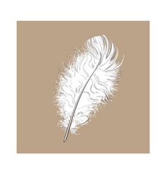 Hand drawn tender fluffy black and white bird vector