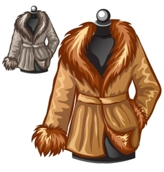 Womens brown winter coat with fur collar vector image vector image