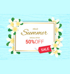 Summer plumeria flowers frame or summer floral vector