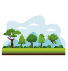 Tree nature ecology plant vector