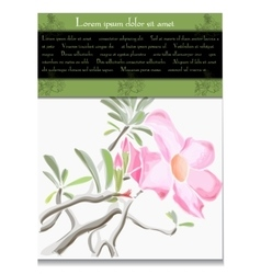 Card with tropical flower vector