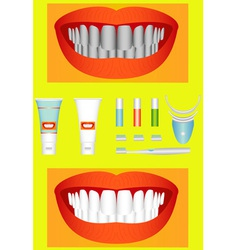 Bleaching of teeth vector image vector image