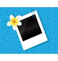 Photo of the flower and drops vector image vector image