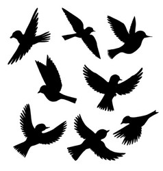 Set of flying birds silhouettes vector