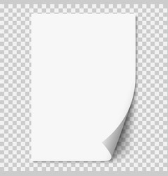 White realistic paper page with curled corner vector