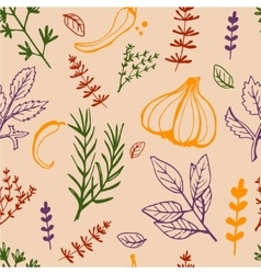 Seamless vintage pattern hand drawn herbs vector