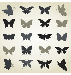 Collection the butterfly vector
