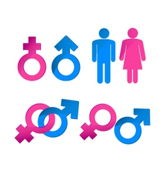 gender symbols vector image