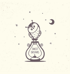 Owl and lantern vector